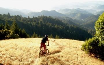 Mountain Biking California Wine Country // Matador Network