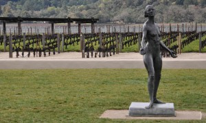 The Muse at Robert Mondavi Winery